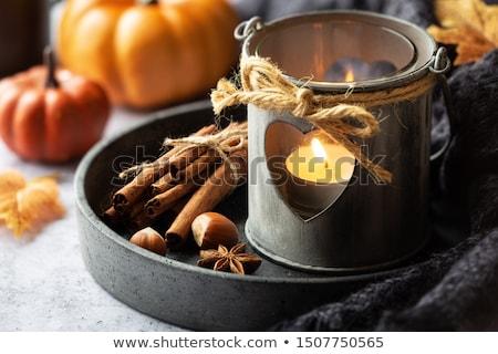 Autunno decorazione asciugare foglie brucia candela Foto d'archivio © ondrej83