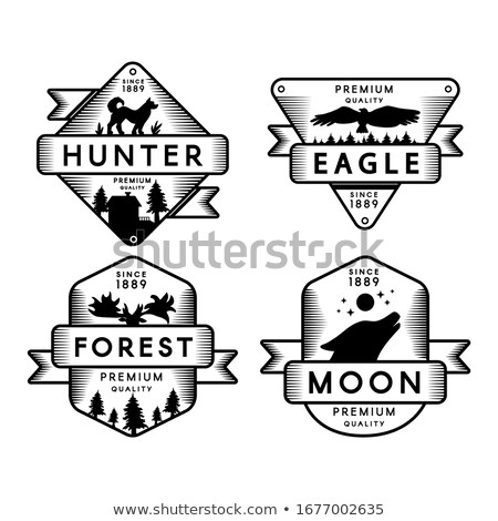 Forest in Flying Wild Condor Silhouette Cartoon Stock photo © barsrsind