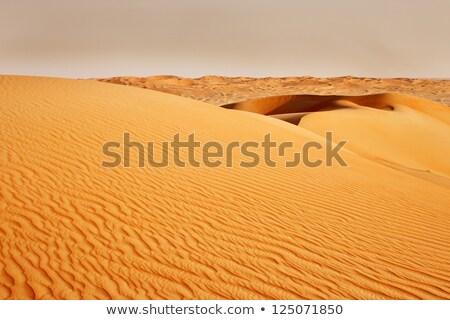 Arab sivatag kilátás nyár narancs kék Stock fotó © SophieJames
