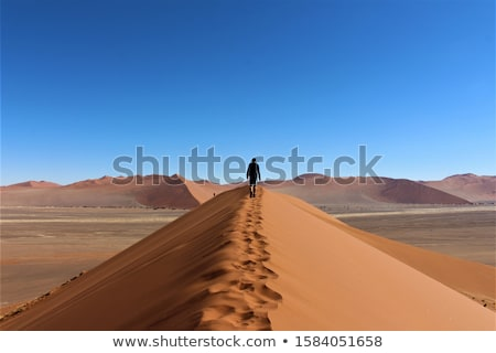 широкий · Панорама · дюна · Намибия · лучший · место - Сток-фото © artush