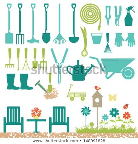 Garden shears. Isolated icon. Gardening vector illustration Stock photo © Imaagio