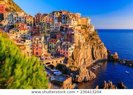 Manarola village on sunset, Cinque Terre, Liguria, Italy Stock photo © dmitry_rukhlenko