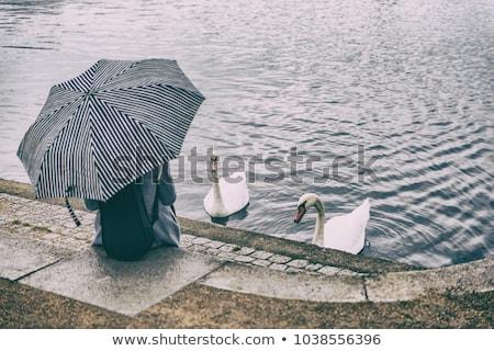 市 公園 ライフスタイル シーン 女性 リラックス ストックフォト © Maridav