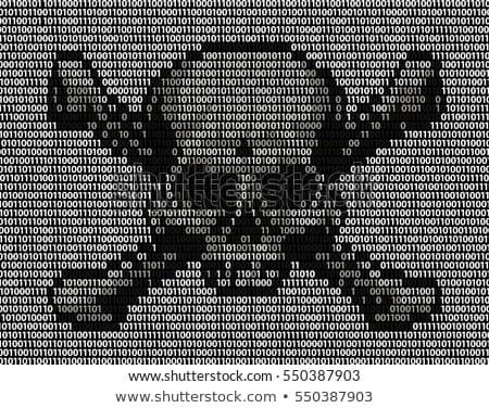 digital code hacker skull Stock photo © romvo