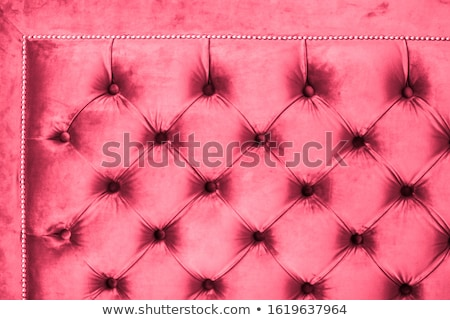 Pink luxury velour quilted sofa upholstery with buttons, elegant Stock photo © Anneleven