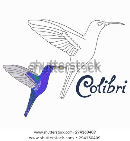 Onderwijs spel kleurboek vogel leren kleuren Stockfoto © natali_brill
