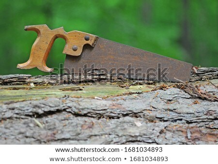Stock photo: Rusty Saw