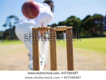 Close up of batsman at field Stock photo © wavebreak_media