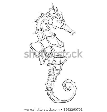 cômico · desenho · animado · mar · cavalo · retro - foto stock © cidepix