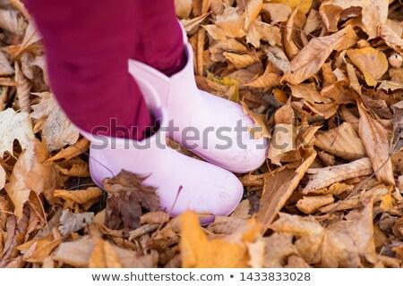 little girl's feet in gumboots on autumn foliage Stock photo © dolgachov