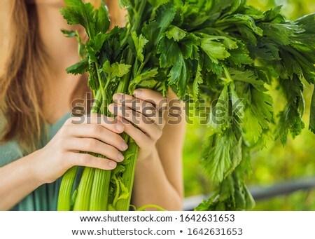 Woman holding celery stalk. Healthy lifestyle concept Stock photo © galitskaya