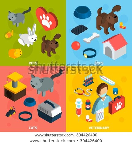 Pet Comb and Scissors isometric icon vector illustration Stock photo © pikepicture