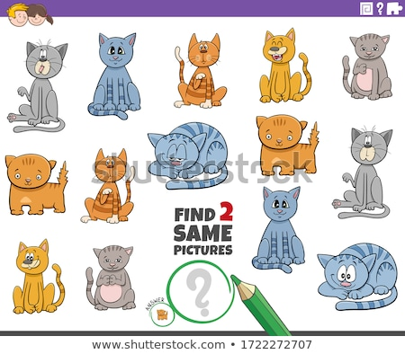 find two same cat or kitten characters game for kids Stock photo © izakowski