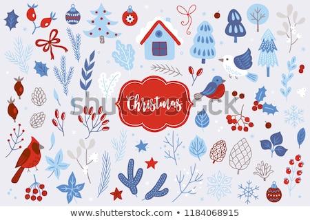 Winter Elements Stock photo © solarseven