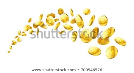 pond · munten · rijk · spaargeld · geld · bancaire - stockfoto © vlad_star