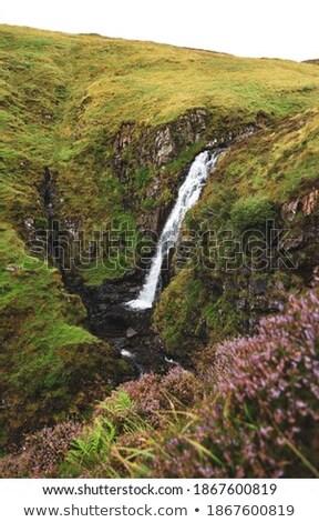 Scotish waterfall  Stock photo © ollietaylorphotograp