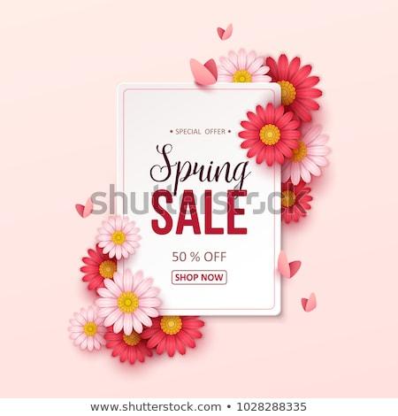 voorjaar · verkoop · poster · korting · kleurrijk · vlinder - stockfoto © netkov1