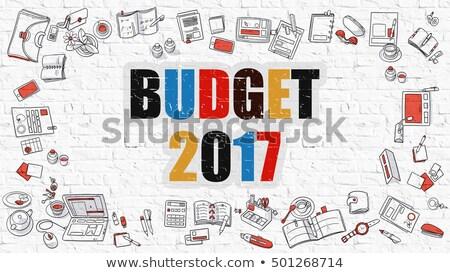 Költségvetés fehér firka stílus ikonok körül Stock fotó © tashatuvango