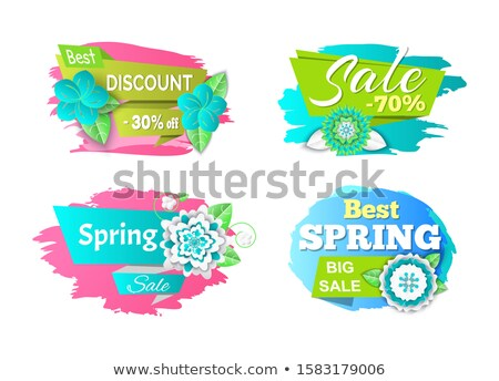 Spring Sale Seasonal Proposition of Markets Set Stock photo © robuart