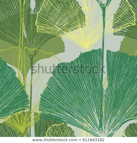 Seamless pattern with Ginkgo biloba leaves Stock photo © odina222
