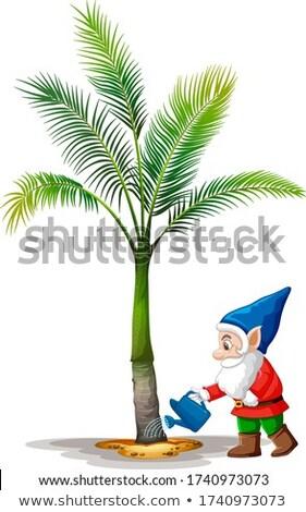 гном пальма белый иллюстрация Сток-фото © bluering