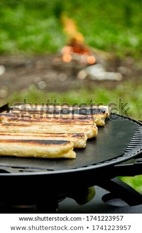Grilled cheese puff pastry on the grill gas outdoor. Stock photo © Illia