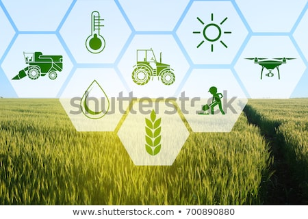 сельского хозяйства промышленности технологий зерновые Сток-фото © AndreyPopov