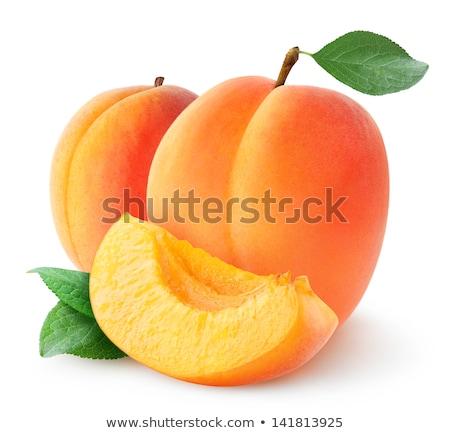 新鮮な アプリコット 葉 3  ブラウン ストックフォト © veralub