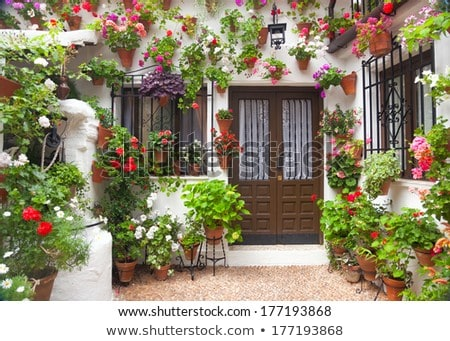 Houses In Street Of Cordoba Photo stock © Taiga
