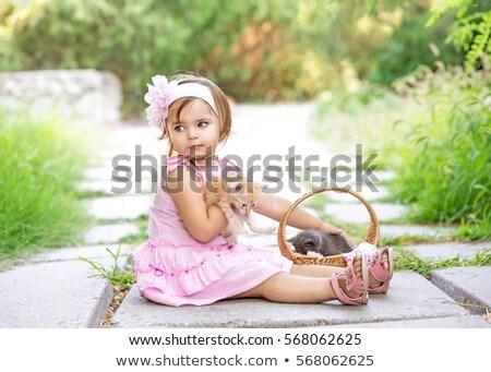 девушки · кошки · девочку · белый · Hat · сидят - Сток-фото © wavebreak_media