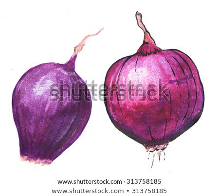 Red Onion on white background. Watercolor illustration Stock photo © ConceptCafe