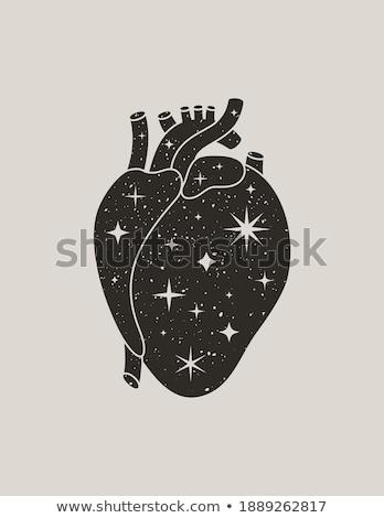 любви пространстве сердце символ космический Элементы Сток-фото © popaukropa