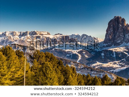 Footpath on snow in a mountain forest in winter Stock photo © Kotenko
