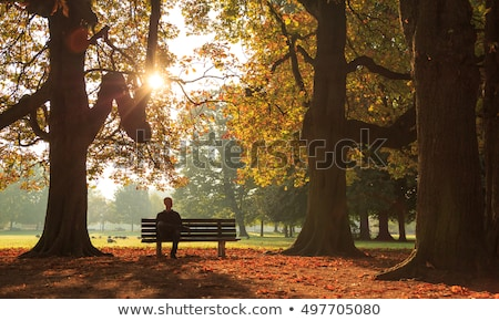 Man Relaxing in Autumn Park Sitting on Bench Alone Stock photo © robuart