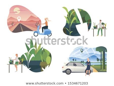 Podróży samochodu życia zestaw strony internetowe Zdjęcia stock © robuart