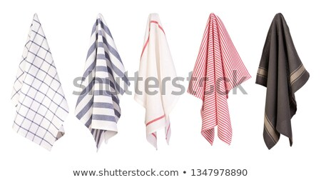 checkered dish towel Stock photo © Digifoodstock