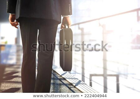 Business executives with briefcases Stock photo © photography33