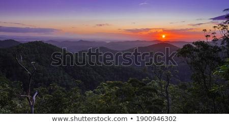 Vooruitzicht bergen heuvels skyline hemel bos Stockfoto © artistrobd