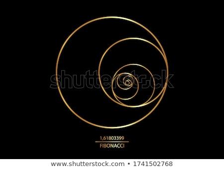 Mathematical Sign golden Vector Icon Design Stock photo © rizwanali3d