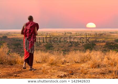 africano · homens · silhueta · pôr · do · sol · ilustração - foto stock © adrenalina