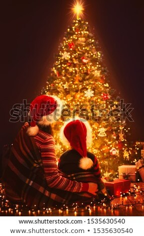 Alegre natal cena noturna dois árvore Foto stock © SArts