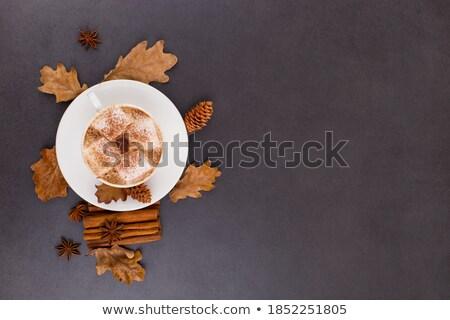 rebanadas · secado · agrios · establecer · diferente · frutas - foto stock © illia