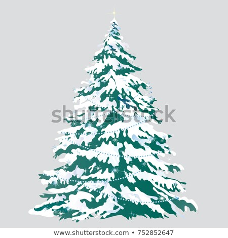 Spruce covered with snow isolated on a white background. Sketch of Christmas festive poster, party i Stock photo © Lady-Luck