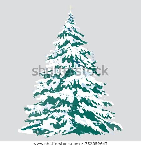 plantilla · de · diseño · invierno · ataviar · forestales · Navidad · folleto - foto stock © lady-luck