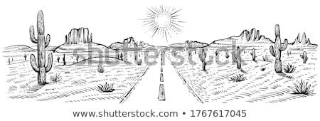 Desert landscape scene with road Stock photo © barsrsind