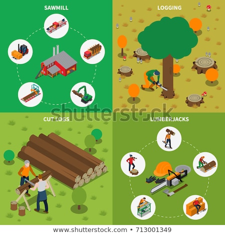 Vector isometric lumberjack cutting tree with chainsaw Stock photo © tele52
