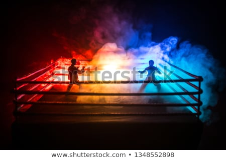 Jelenet emberek harcol gyűrű aréna illusztráció Stock fotó © bluering