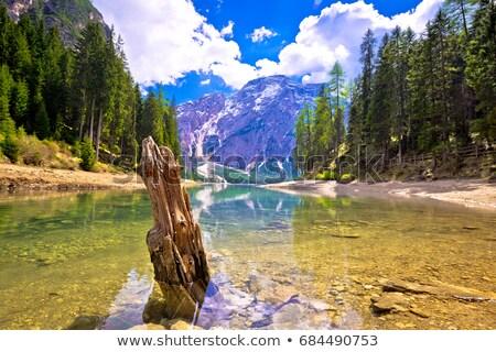 湖 のどかな 風景 表示 南 地域 ストックフォト © xbrchx