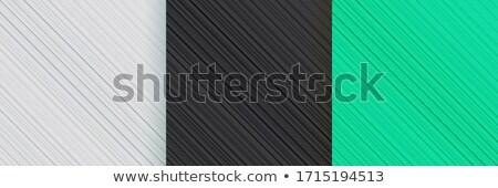 Zarif boş diyagonal hatları ayarlamak soyut Stok fotoğraf © SArts