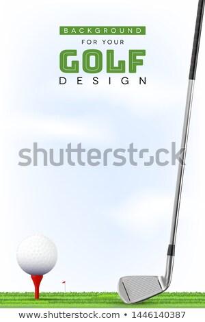 golf club tournament red flag on course Stock photo © yupiramos